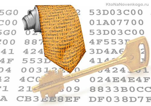 Визначення типів хешей за допомогою скрипта hash-Identifier для розшифровки паролів